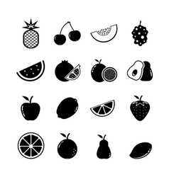 Fruit Icon vector image