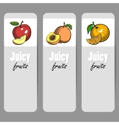 BannerFruits vector image