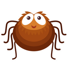 brown spider on white background vector image