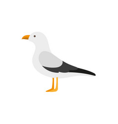 flat style side view portrait of seagull albatross vector image