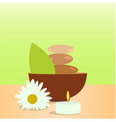 spa and wellness colorful isolated vector image