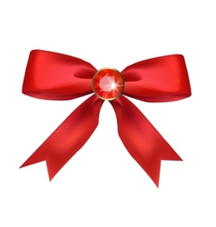 Bow with ruby vector image vector image