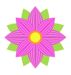flower astra flat icon easter and holiday vector image