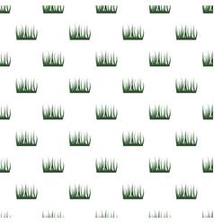Green grass pattern vector