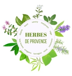 herbes de provence round emblem vector image vector image
