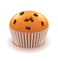 muffin with chocolate crumbs isolated on white vector image vector image