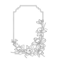narcissus daffodils spring floral border frame vector image vector image