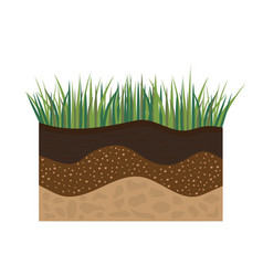 Soil profile with grass vector