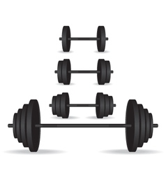 Weights black collection vector image