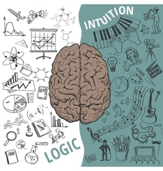 Left and right brain functionshuman concept vector