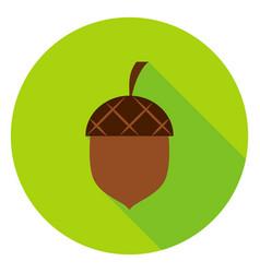 Acorn circle icon vector