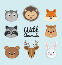 cute wild animal nature fauna set image vector image