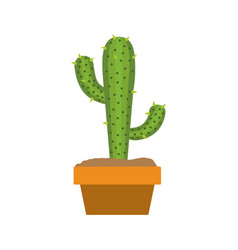 White background with cactus with two branches in vector