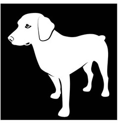 Black and white of hunting dog vector