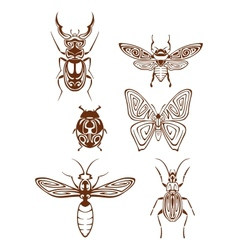 Insects tattoos in tribal style vector image vector image