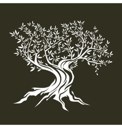 Olive tree silhouette icon isolated vector image vector image