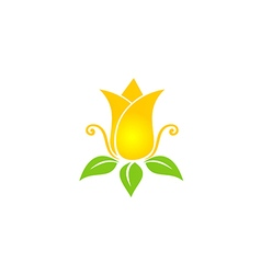 tulip flower beauty nature logo vector image