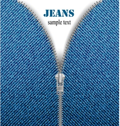 Jeans zipper vector