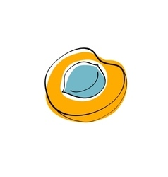 Orange half apricot with seed vector