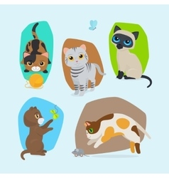 Cute kittens isolated set vector