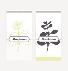 Marjoram in outline and silhouette style vector