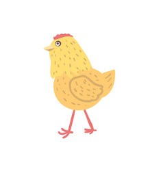 Chick hand drawn vector