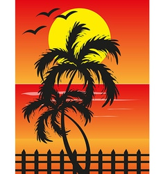 Beach sunset background vector image