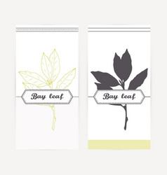 Bay leaves in outline and silhouette style vector