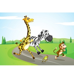 Animals running at the street vector