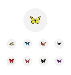 Realistic archippus common blue purple monarch vector