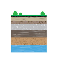 Soil profiles with grass and bushes vector