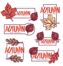 Autumn frames stickers emblems fall leaves vector