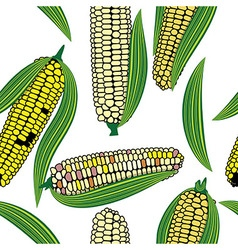 Corn seamless food background isolated cob plant vector