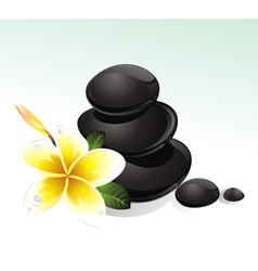 Spa with white flowers vector