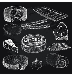 Cheese collection of graphic vector