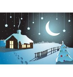 christmas night vector image