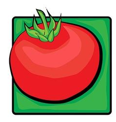 tomato clip art vector image vector image