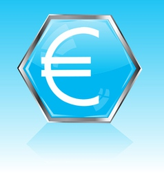 Button with sign euro vector