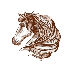 Profile of horse with flowing mane sketch style vector image