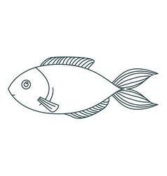 Monochrome contour of trout fish vector