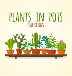 Flat cactuses and home plantas concept vector