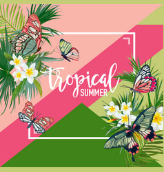 Tropical flowers summer design with butterflies vector