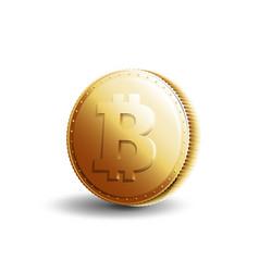gold coin bitcoin vector image vector image