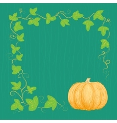 Hand drawn pumpkin and vine vector image