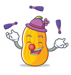 Juggling butternut squash mascot cartoon vector