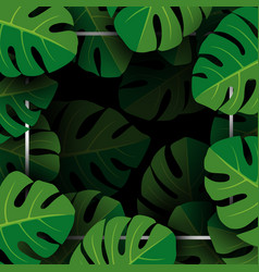 monstera deliciosa tropical leaves background vector image vector image