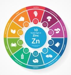 10 foods high in zinc vector