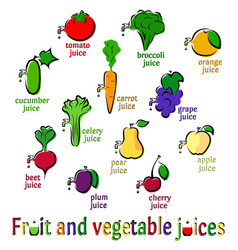 fruit and vegetables juices vector image