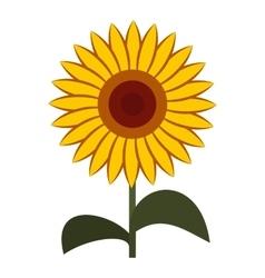 Sun flower icon flat style vector