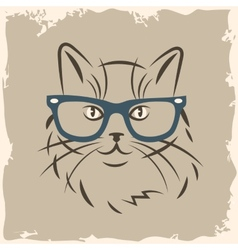Cat in glasses vector